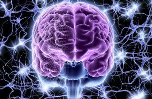 sclerosi-multipla-nubra-medica