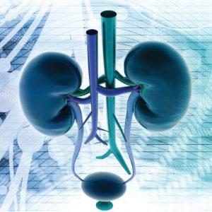 patologie-e-cure-in-urologia
