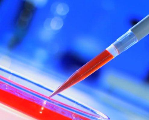 Batteriologia | NUBRA Medica